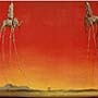 Salvador Dali - Les Elephants - (SD-82)