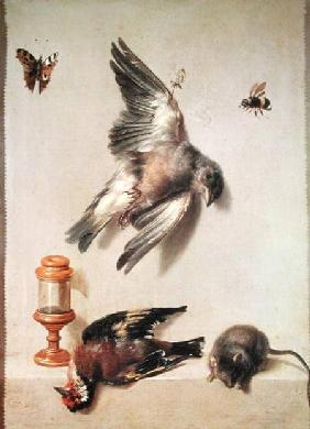 Still Life of Dead Birds and a Mouse 1712