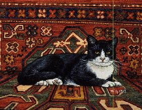 Second Carpet-Cat-Patch, 1992