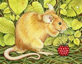 The Raspberry-Mouse