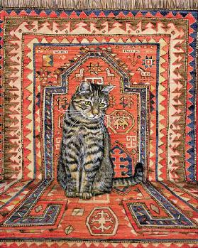 The Carpet-Cat