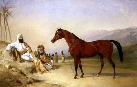 Two Bedouin with a Bay Arab Stallion in the Desert 1860