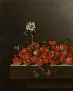Still Life with Wild Strawberries 1705