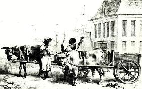 Negro Boys with bullock carts, from ''Voyage a Surinam'' 1834