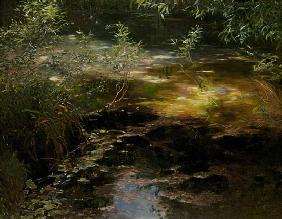 Kunstdruck von Alexander Koester - See bei Brixen
