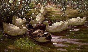 Kunstdruck von Alexander Koester - Entenvolk unter Birkenzweigen