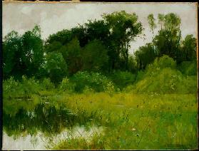 Nach dem Regen am Minnehaha Creek 1897