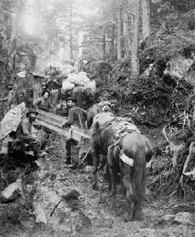 Climbing the Dyea Trail on the way to the Chilkoot Pass during the Klondike Gold Rush (1897-98) (b/w 16th