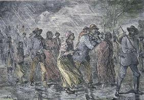 Fugitive slaves fleeing from the Maryland coast to an Underground Railroad depot in Delaware, 1850 ( 11th