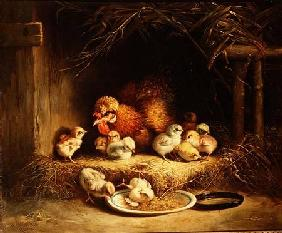 Hen with her Chicks 1867