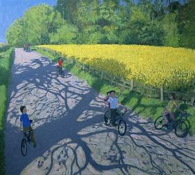 Cyclists and Yellow Field, Kedleston, Derby (oil on canvas)