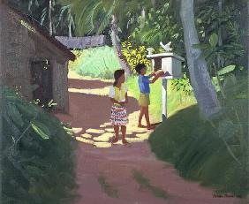 Dovecote, Bentota, Sri Lanka, 1998 (oil on canvas)