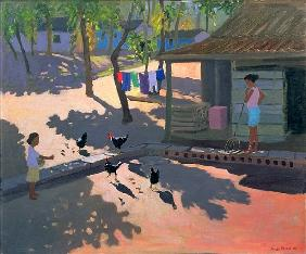 Hens and Chickens, Cuba