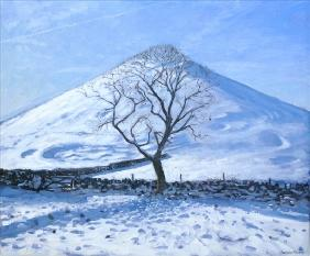 Hill and Tree, Derbyshire