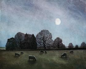 Moonlit Night, 2004 (oil on canvas)