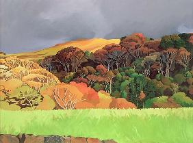 Calgary Woods, Isle of Mull (oil on canvas)
