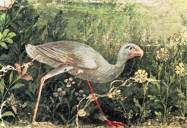 Wall painting of a Sultan chicken in a garden Pompeii 1st centur