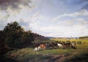 View of the Kladrub Studfarm in Bohemia 1850