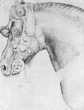 Head of a horse, from the The Vallardi Album