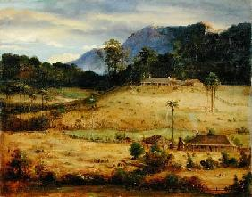 Homesteads c.1850