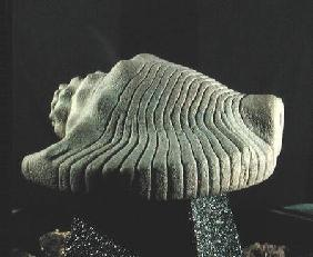 Sea Snail Shell c.1500