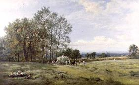 An English Hayfield 1880