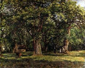 The Forest 1870