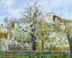 The Vegetable Garden with Trees in Blossom, Spring, Pontoise 1877