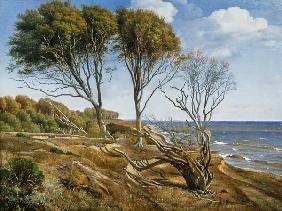 Kunstdruck von Carl Aagaard - A Coastal Landscape
