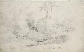 Boulders in Woodland 1800 cil o