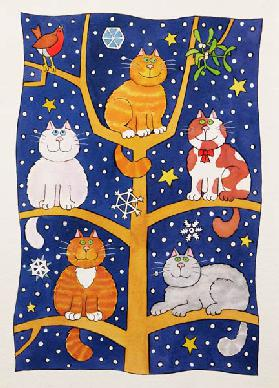 Five Christmas Cats