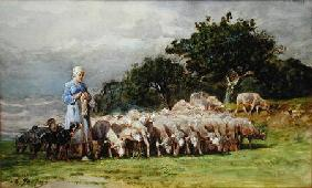 A Shepherdess with a Flock of Sheep