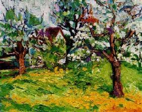 Kunstdruck von Christoph Menschel - Apfelblüte bei Vogt I