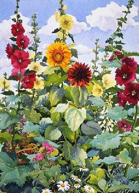 Hollyhocks and Sunflowers