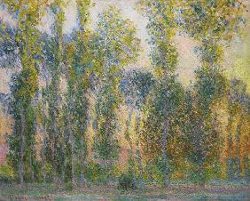 Pappeln bei Giverny 1887