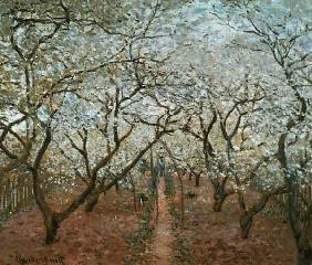 Monet / Blossoming Orchard / 1879
