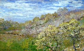 Monet, Claude : B�ume in Bl�te