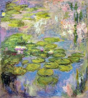 Monet, Claude : Waterlilies