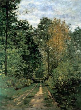 Monet, Claude : Waldweg