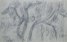 Reflections of Willows, c.1918 (black crayon on blue-gray paper) 18th
