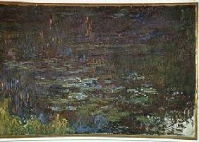 Waterlilies at Sunset, detail from the right hand side 1915-26