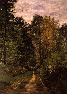 Wooded Path 1865