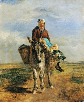 Kunstdruck von Constant Troyon - Country Woman Riding a Donkey