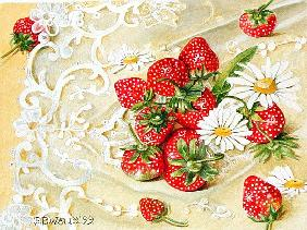 Strawberries on Lace, 1999 (acrylic on paper)