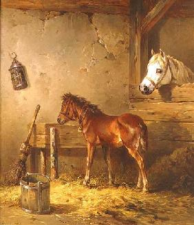 Mare and Foal in a Stable