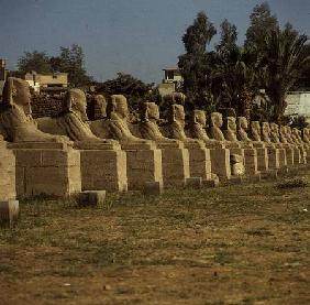 Avenue of Sphinxes, added by Nectanebo I (380-362 BC) Late Period added by N