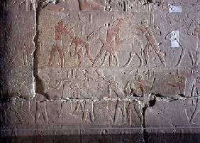Harvest scene, detail of relief decoration from the Mastaba of Akhethotep at Saqqara Old Kingdo