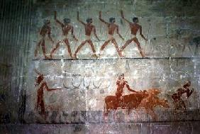 Men herding sheep and cattle from the Mastaba Chapel of Ti, Old Kingdom