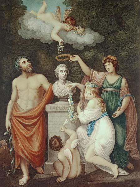 Aesculapius, Flora, Ceres and Cupid Honouring the Bust of Linnaeus, plate 17 from ''The Temple of Fl