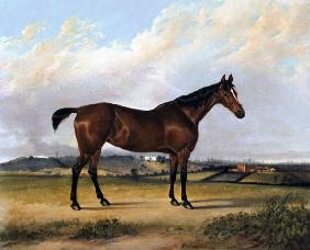The Pride of the Stable 1835